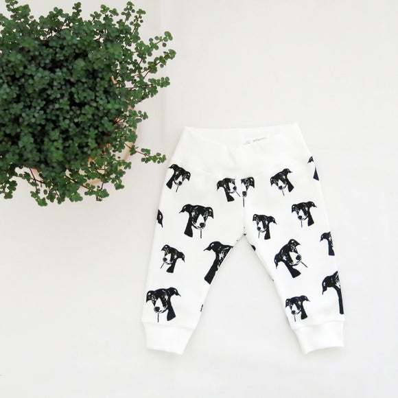 greyhound-whippet-baby-leggings