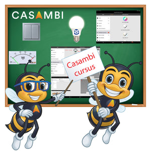 Formation Casambi Benelux