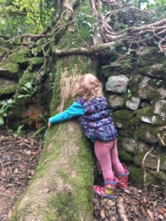 tree-hugging in Bishop's Wood, Caswell