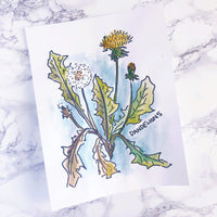 Watercolor Pages /// Plants