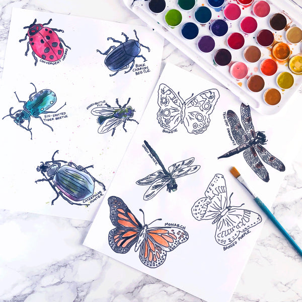 Watercolor Pages /// Bug Collection