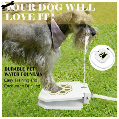 Dog Water Fountain Step On Toy Outdoor