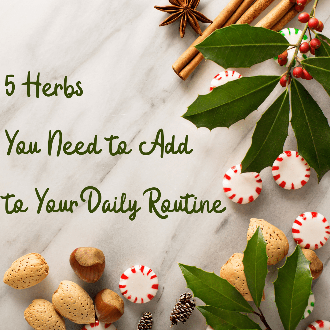 5 Herbs You Need to Add to Your Daily Routine