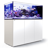 Red Sea Reefer XXL625/XXL750