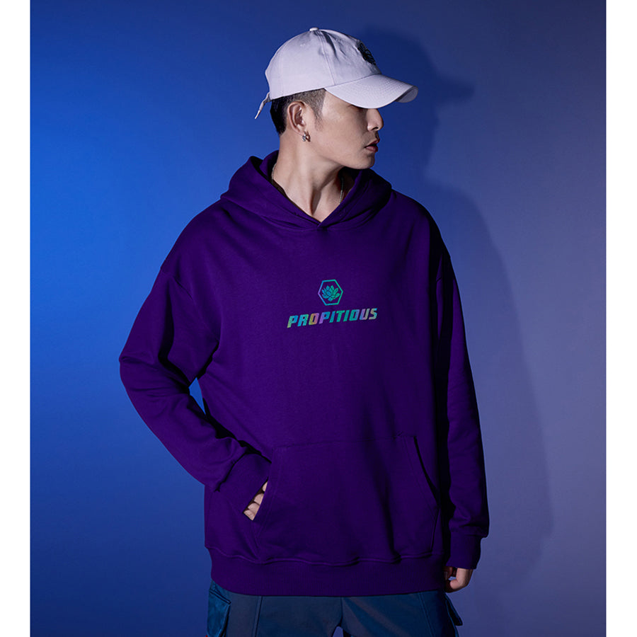 Reflective Majestic Kirin Hoodie - 5 ELEMENTS
