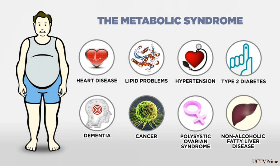 Your Complete Guide to Metabolic Syndrome