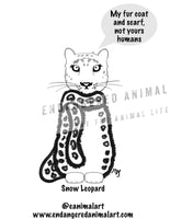Snow Leopard Colouring Page - Snow Leopard Coloring Page - Big Cat Colouring Page - Big Cat Coloring Page - Endangered Animal Art