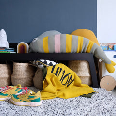 Dark coloured walls to serve as a great statement in the kids room
