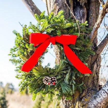 Traditional Round Wreath-Decorative Evergreens-Christmas Delivered