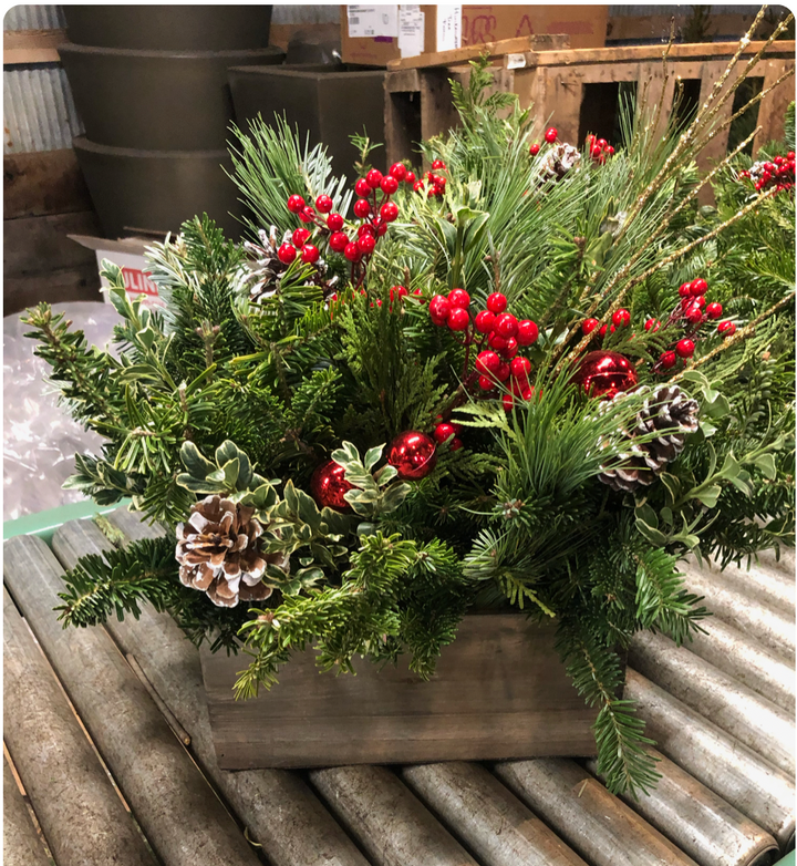 Woodland Centerpiece-Decorative Evergreens-Christmas Delivered