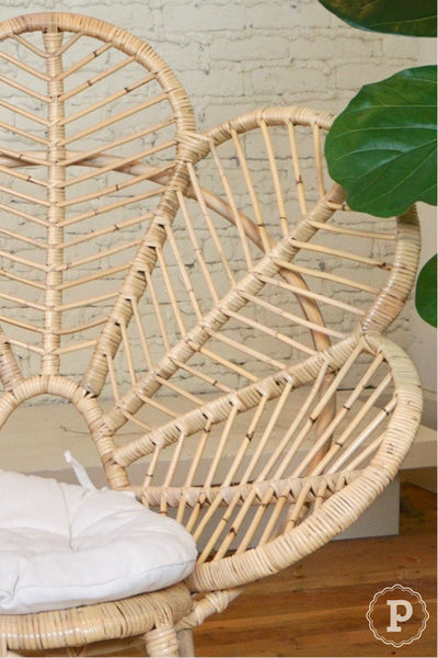 Clean rattan furniture