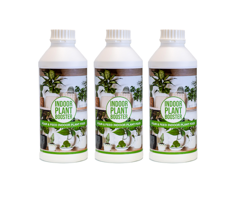 Indoor Plant Booster Triple Pack
