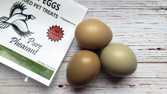 The Benefits of Raw or Freeze-Dried Eggs for Dogs