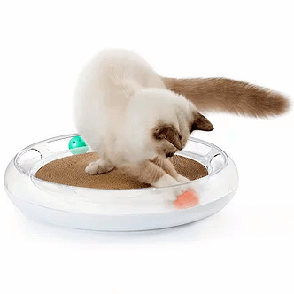 cat playing with scratcher and toy set