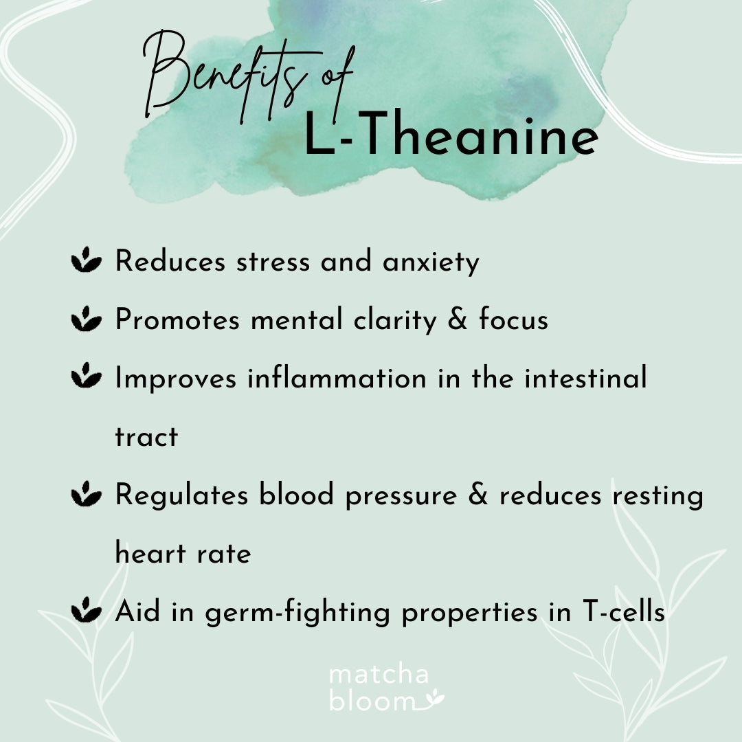 benefits of l-theanine