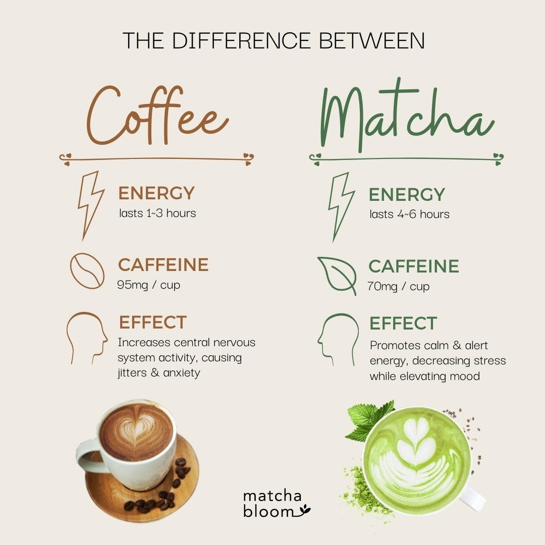difference between coffee and matcha