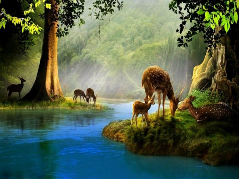 Water Stream & Deer Family Diamond Painting