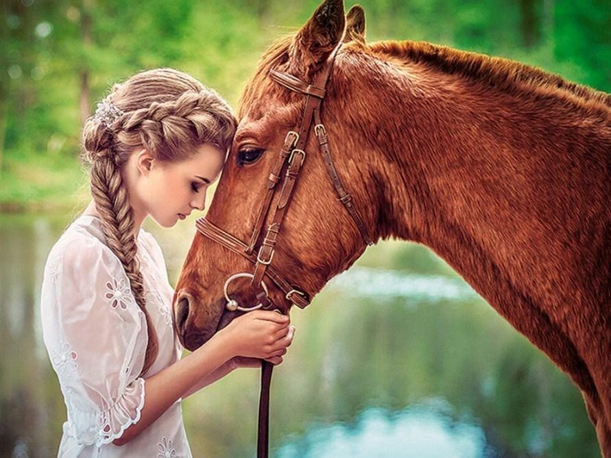 Beautiful Girl & Horse Paint by Diamonds