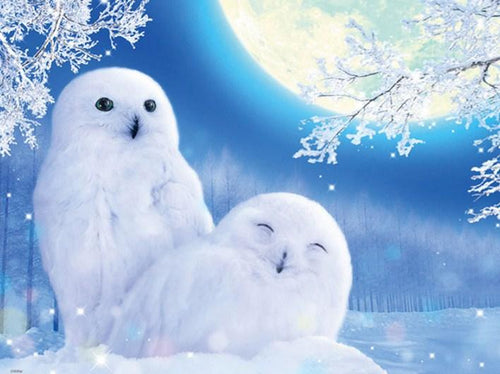 Cute White Owls Pair Diamond Painting