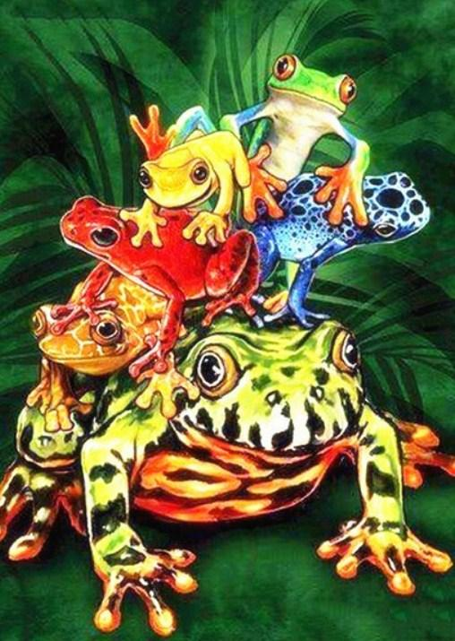 Frogs Species Paint by Diamonds