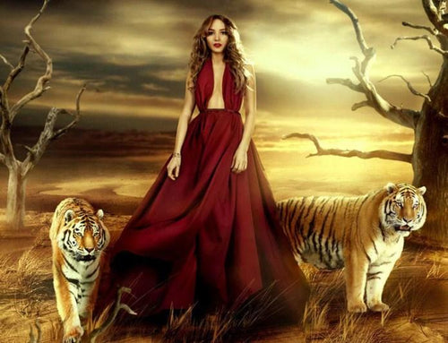 Girl & Tigers Paint by Diamonds