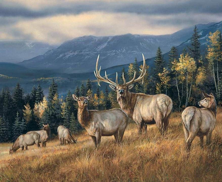 Grazing Elks Diamond Painting Kit