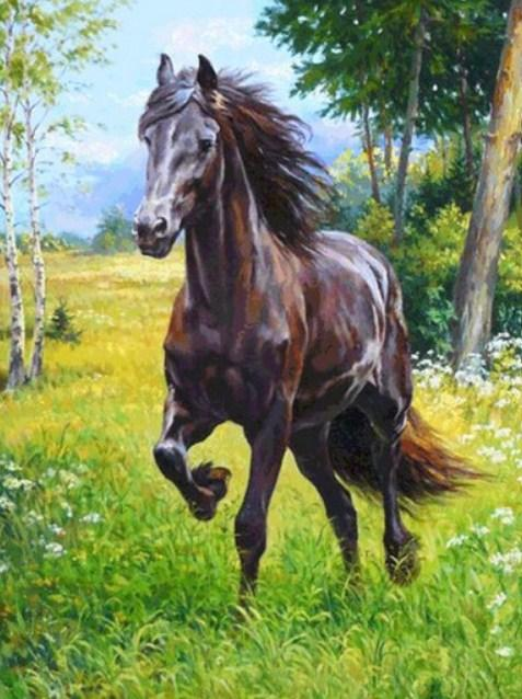 Horse Running Paint by Diamonds