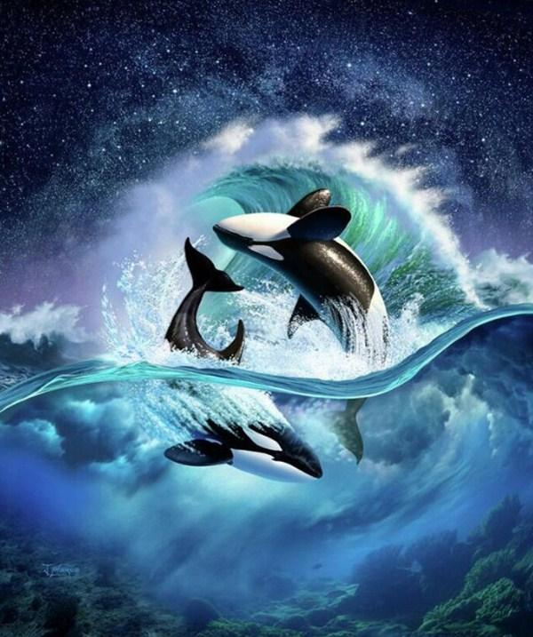 Killer Whales Rolling in the Ocean Diamond Painting