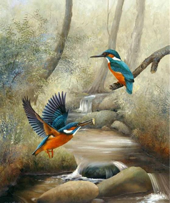 Kingfisher Pair Paint by Diamonds