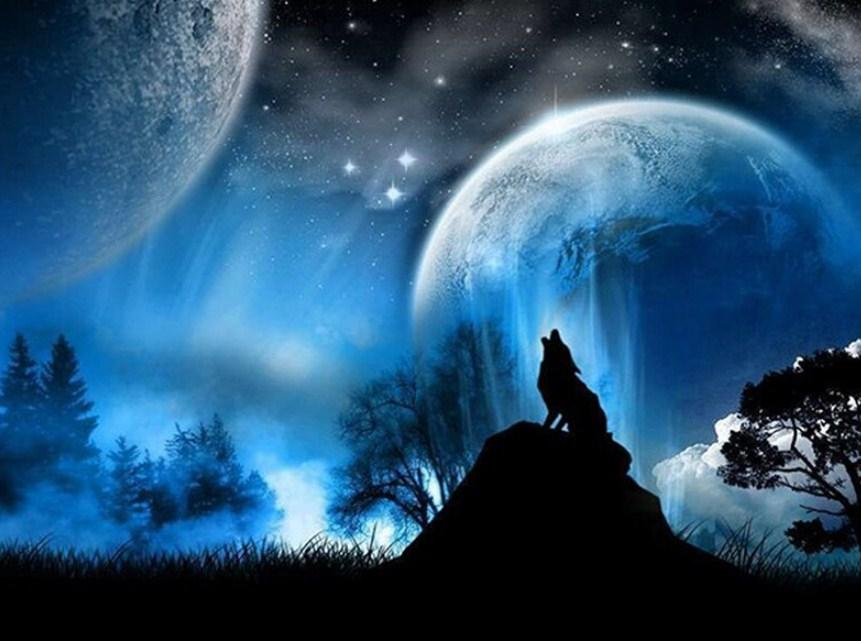 Night Wolf Paint by Diamonds