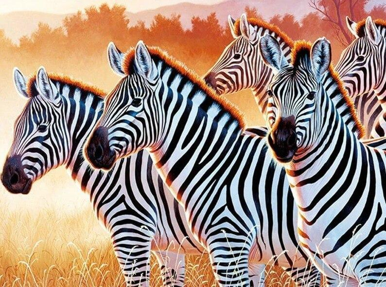 Zebras DIY Diamond Painting Kit - Diamond Painting Deutschland