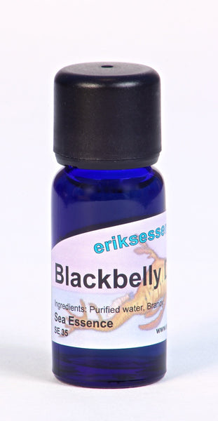 SE 35. Blackbelly Dragonfish -  pale gold. Sea Essence. 15ml