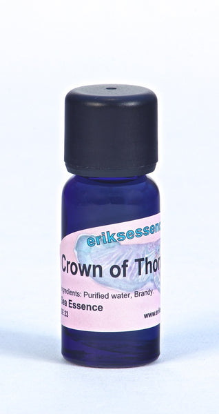 SE23. Crown of Thorns Starfish - violet. Sea Essence. 15ml
