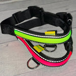 Load image into Gallery viewer, New walkingMate™ - Battery LED 'Mesh' Dog Collars