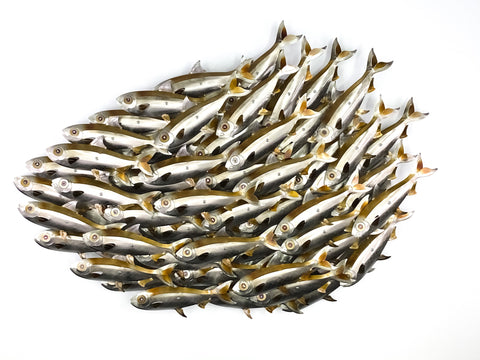 50 Small Sardine Gold Baitball