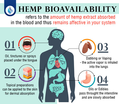 Hemp Bioavailability: What is it and why does it matter?