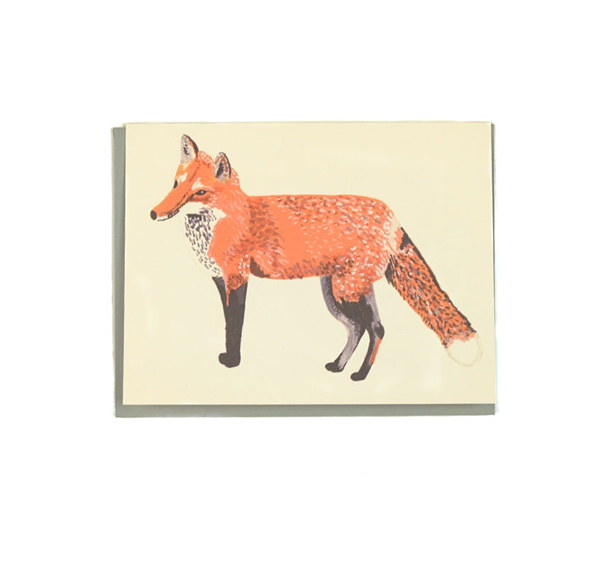 Fox - Any Occasion Card