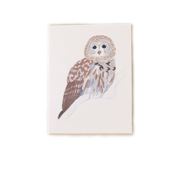 Barn Owl - Any Occasion Card