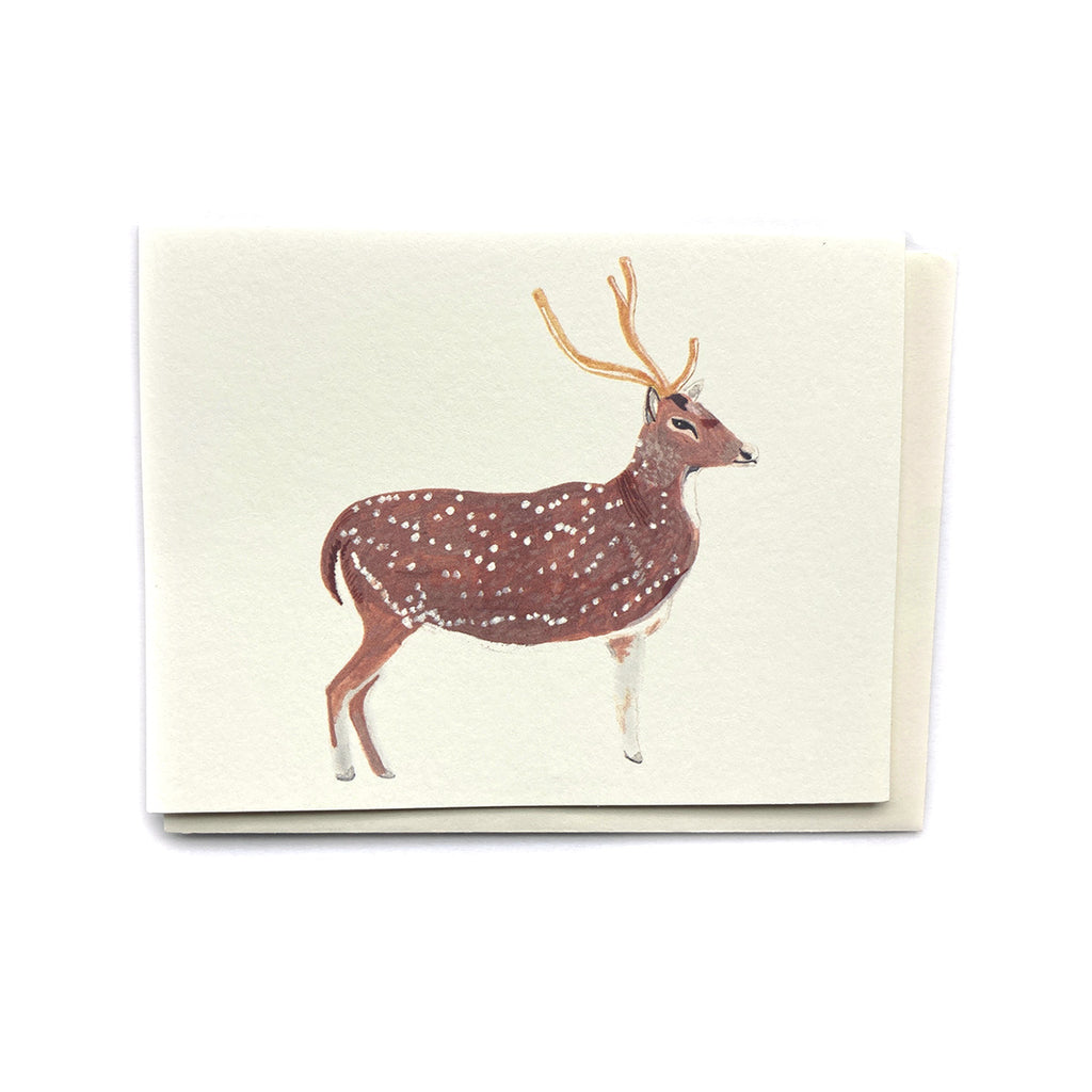 Deer - Any Occasion Card