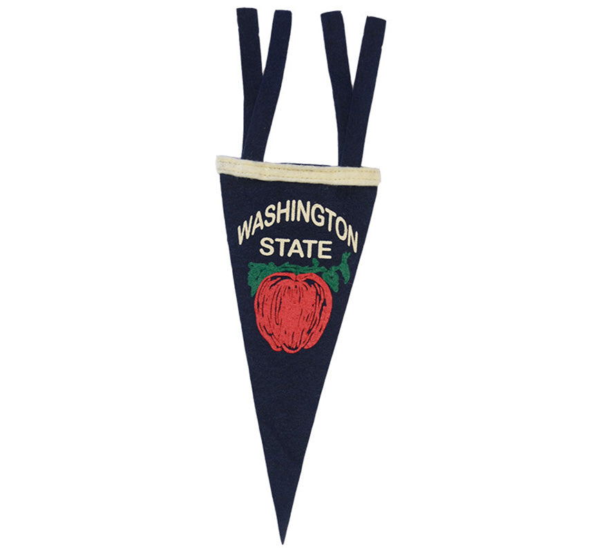 Washington State Mini Pennant