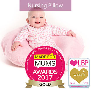 Nursing Support Pillow