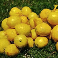Lemon, Yellow -  500 g