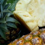Pineapple Honey Cultivar - 1 pcs