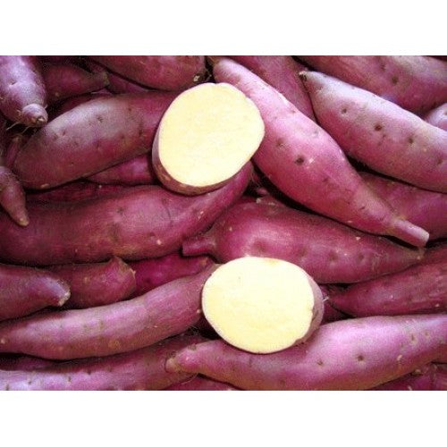 Sweet Potato - 2 kg