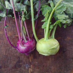 Kohlrabi Green / Purple 600 g