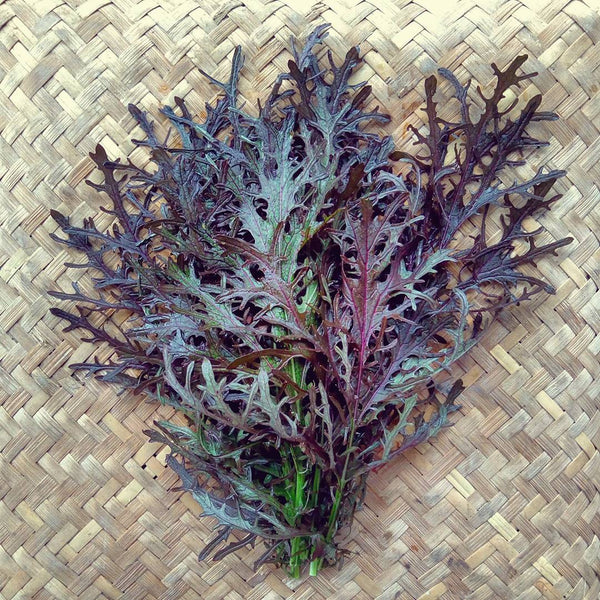 Mustard, Purple Frilled - 200 g