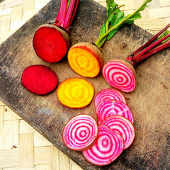 Beetroot, Candystripe - 300 g