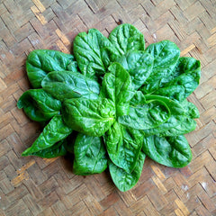 Spinach, English Baby - 200g