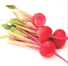 Beetroot Candystripe Baby - 200 g