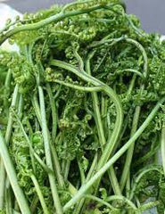 Fiddlehead Ferns / Pucuk Pakis- 300g